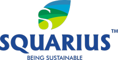 Squarius Logo